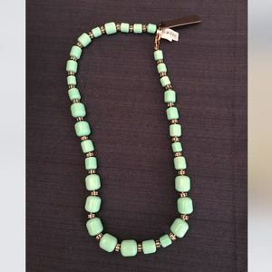 J. Crew Turquoise Necklace with Pave Accents NWT